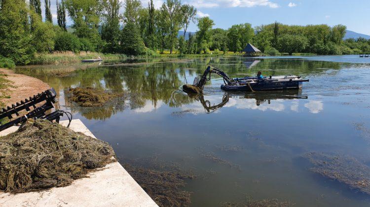 Vejsplachy, Vrchlabí, cistenie jazera, ciste jazero, kosenie vodnej plochy
